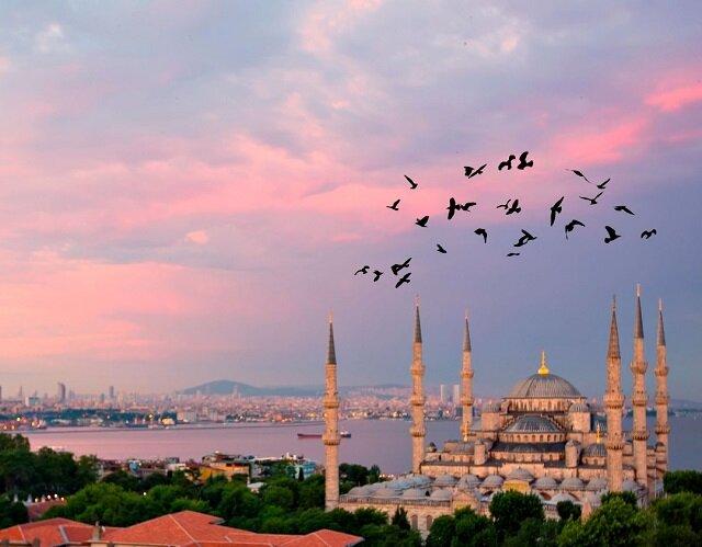 تحصیل در ترکیه 4
